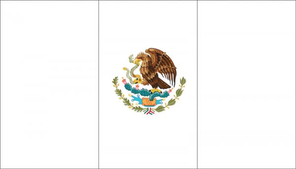 Resultado De Imagen Para Bandera De Mexico Para Colorear En 2019