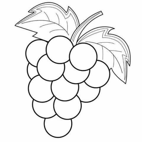 22 Dibujos De Frutas Para Colorear E Imprimir