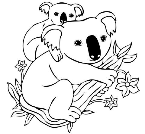 Dibujo De Bebé Koala Sobre El Lomo De Su Mamá Para Colorear