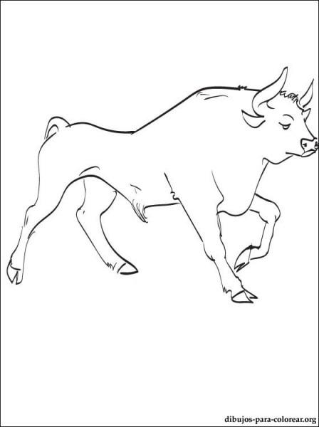 Toro O Bull Dibujo Para Colorear