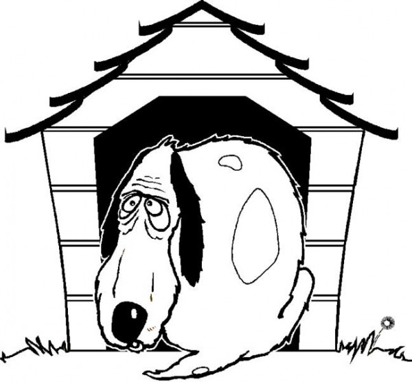 El Perro Y Su Casa