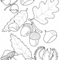 Dibujos De Frutos Del Oto?o Para Colorear E Imprimir