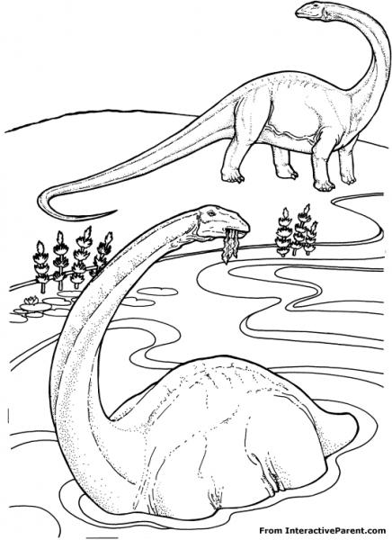 Dibujos Para Colorear Animales Prehistóricos  Dinosaurios