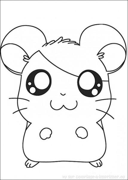 Hámster  5 (animales) – Páginas Para Colorear