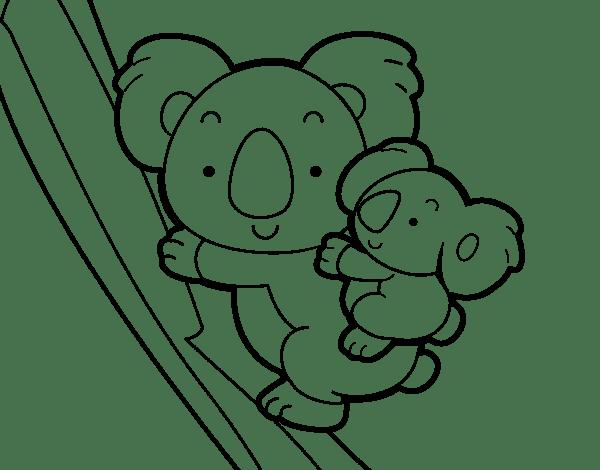 Koala  59 (animales) – Páginas Para Colorear