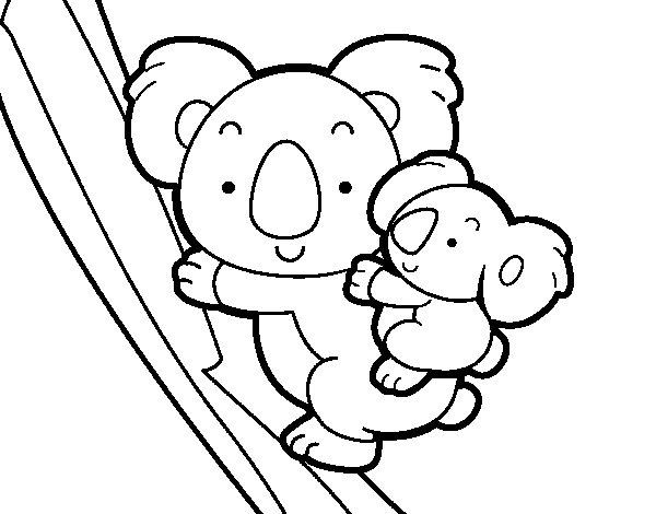 Koala  78 (animales) – Páginas Para Colorear