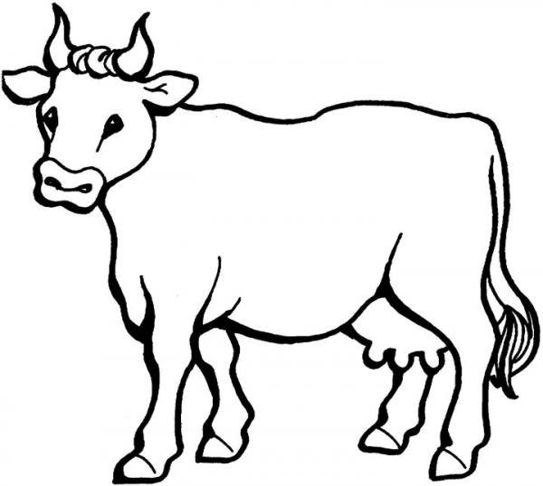 Vaca  9 (animales) – Páginas Para Colorear