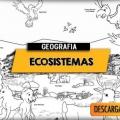 Imagenes Para Colorear De Ecosistemas