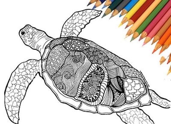 Tortuga Para Imprimir Para Colorear Marinos Buceo Vacaciones