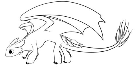 Dibujo De El Dragón Furia Nocturna Para Colorear