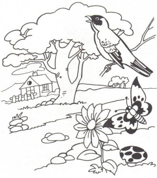 Paisajes Naturales Para Imprimir Y Pintar