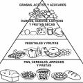 La Nutricion Para Colorear