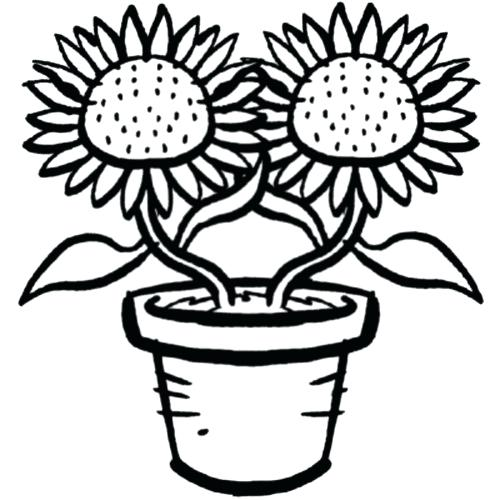 Plantas Ornamentales Para Colorear