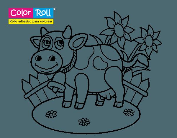 Dibujo De Vaquita Color Roll Para Colorear