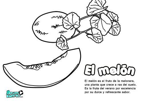 Dibujos Colorear Para Niños, El Melón  Educativos Frutas Y