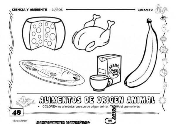 Risultati Immagini Per Imagenes De Alimentos De Origen Animal Para