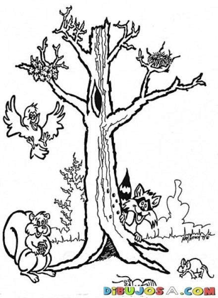 Animales Del Bosque Con Un Arbol Para Colorear