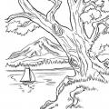 Dibujos De La Naturaleza Para Colorear