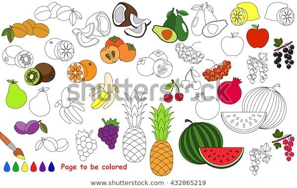 Vector De Stock (libre De Regalías) Sobre Grandes Frutas De Verano