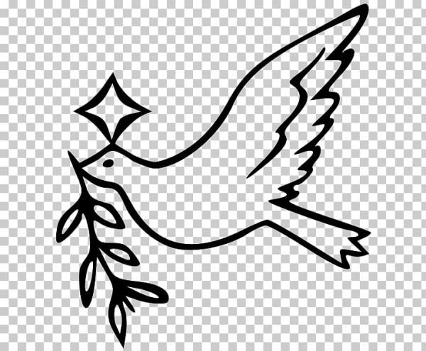 Columbidae Libro Para Colorear Palomas Como Símbolos Día