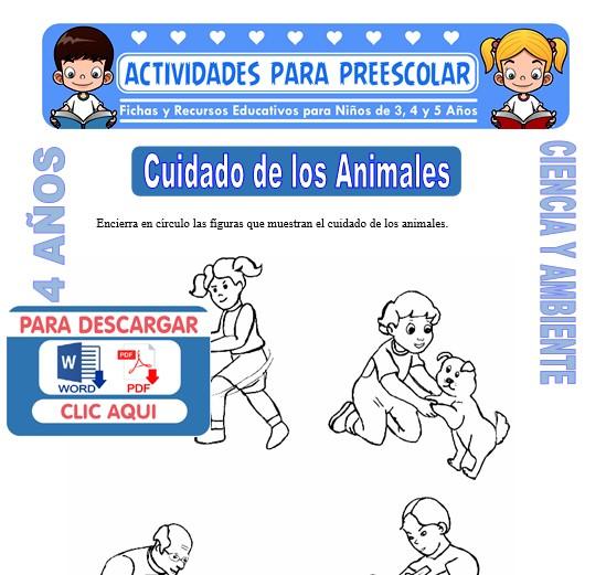 Cuidado De Los Animales Para Niños De 4 Años