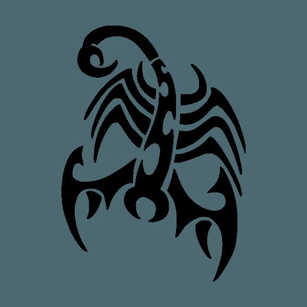 Escorpión  33 (animales) – Páginas Para Colorear