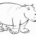 Hipopotamo Para Colorear E Imprimir