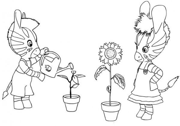 Zou  16 (dibujos Animados) – Páginas Para Colorear