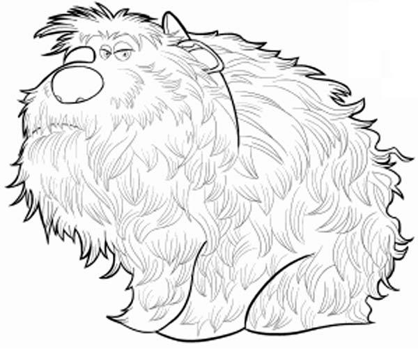 Dibujos De Los Personajes De Mascotas