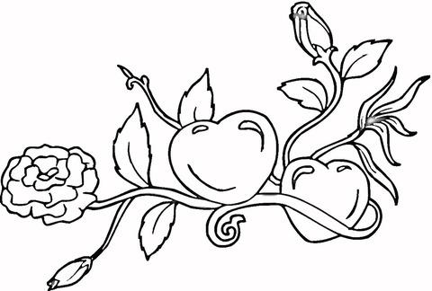 Dibujo De Corazón Y Rosas Para Colorear