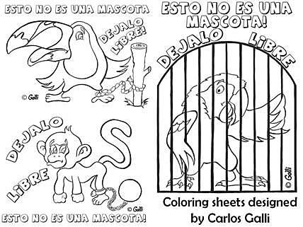 Imagenes Del Cuidado De Los Animales Para Colorear