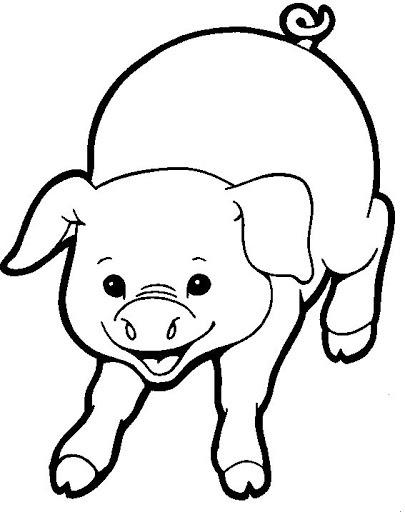 Porcino Para Pintar