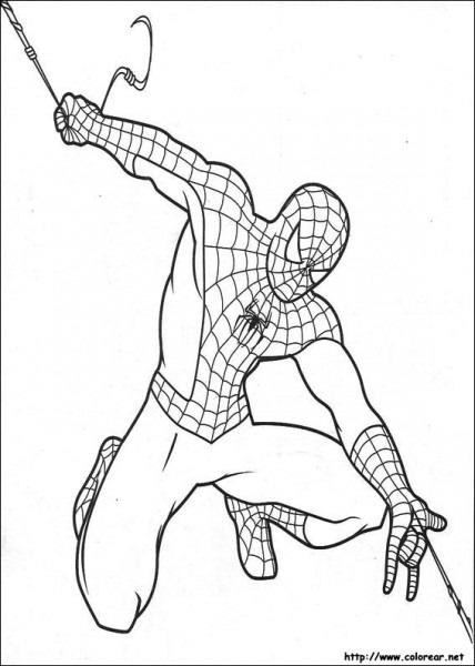 Dibujos De Spiderman Para Colorear  El Hombre Araña Para Niños