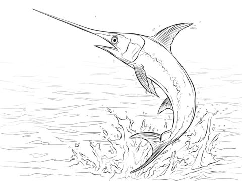 Dibujo De Pez Espada Saltando Sobre El Agua Para Colorear