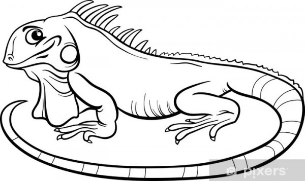 Vinilo Pixerstick Iguana Libro Para Colorear De Dibujos Animados