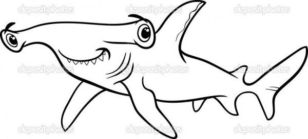Colorir Desenho Do Tubarão Martelo