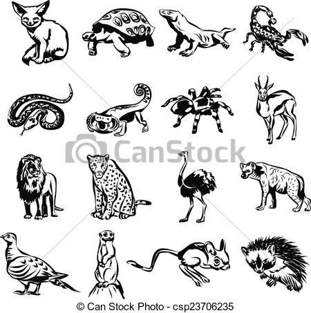 Animales Del Desierto Dibujos