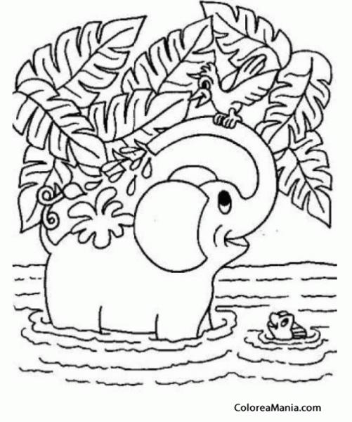 Colorear Elefante, Baño En El Río (animales De La Sabana), Dibujo