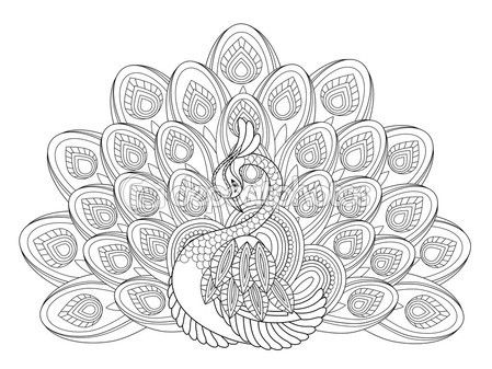 Elegante Pavo Real — Vector De Stock  86001108
