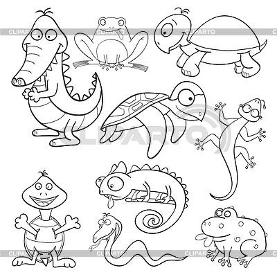 Libro Para Colorear Con Reptiles Y Anfibios