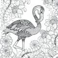 Dibujo Flamenca Para Colorear