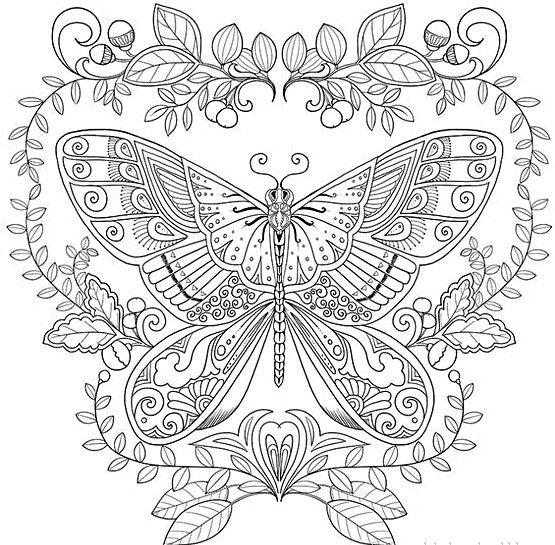 Mandalas De Mariposas Para Colorear E Imprimir