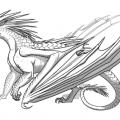 Alas De Dragon Para Colorear