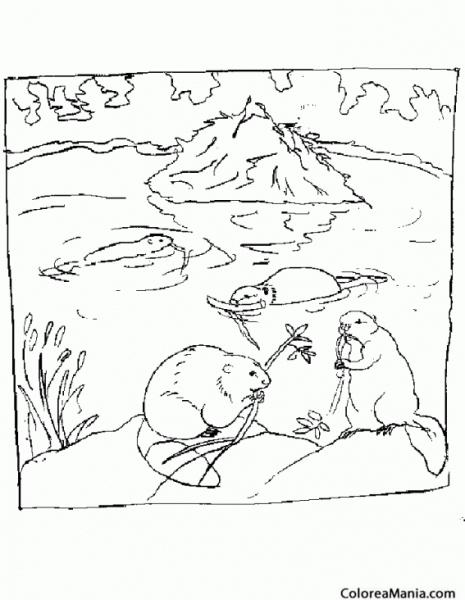 Colorear Castores En El Rio (animales Del Bosque), Dibujo Para