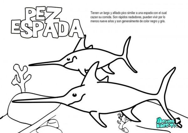 El Pez Espada, Dibujos Para Colorear De Peces Educativos Para