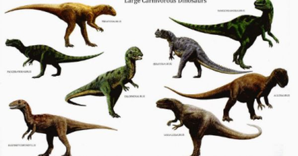 Fotos De Dinosaurios Carnivoros Con Nombres