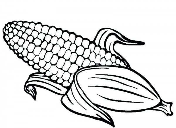 Paginas Para Colorear De Maiz Dibujos Para Colorear Del Maiz