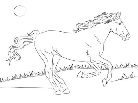 Dibujo De Hermoso Caballo Mustang Para Colorear