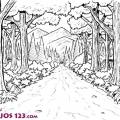 Dibujos Bosque Encantado Para Colorear