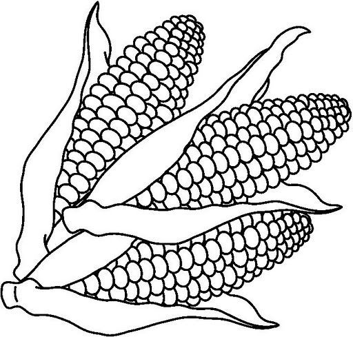 Free Coloring Pages Of Corn Clipart